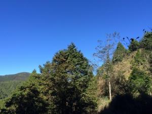 山岳之美 太平山