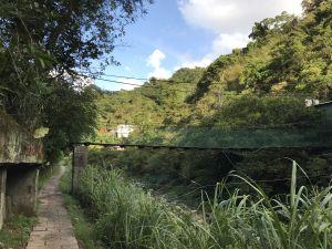 金瓜寮溪蕨類步道+烏塗溪步道打卡