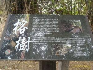 知高圳步道,雪蓮步道,學田山