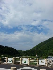 春夏之際-竹子湖&中正山