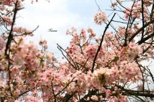 春夏之際,下哨後的生活......