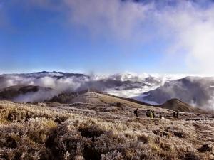 冷酷異境 ,合歡山主峰步道 2014-12-14