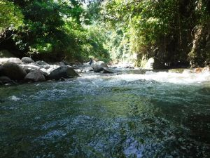 親近山水,石門老梅溪溯溪