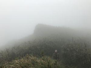 【七星山主東峰】冷水坑-小油坑