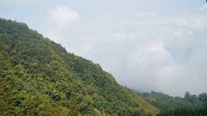 鳳凰山-台演山