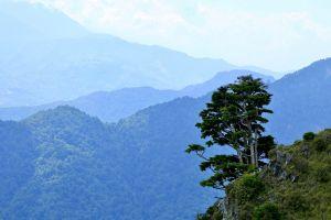 懷念雪山---台灣次高峰