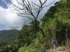 竹子山古道-竹子山微波反射板俗稱北北峰