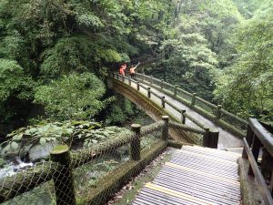 三峽熊空 組合山-滿月園山-滿月圓森林遊樂區