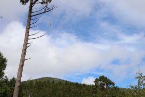 太平山翠峰湖環山步道