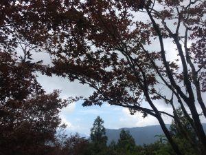 106.08.12 翠峰湖環山步道行
