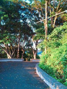 桃園蘆竹-五酒桶山