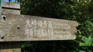 百年坪頂古圳與北五指山之草原驚艷
