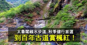 【新聞】慢遊百年古道-綠水步道