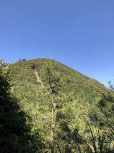 司馬限林道—北坑山三角點