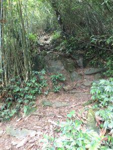 陡很大的尾寮山一日單攻