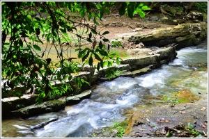 【南投】蟬噪林間響、清泉石上流:澀水社區步道遊