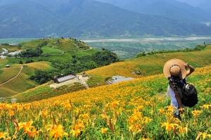 【花蓮】富里六十石山