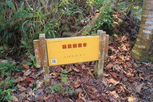 新春藤山園步道 20180218