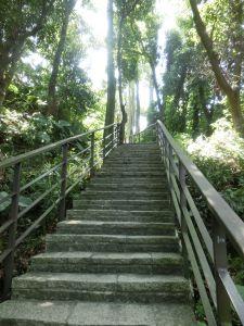 虎山親山步道