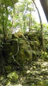 土城石門內尖山-十八羅漢岩105.6.9