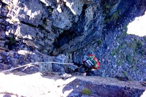 【紅檜、水鹿與獵人】揹走百岳 – 台灣的高山協作