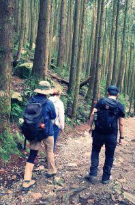 大雪山橫嶺山自然步道