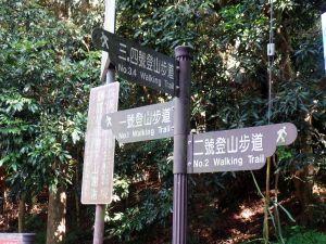 大坑2號+5號步道(頭嵙山)