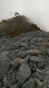 立霧清水太平洋