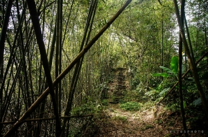 【嘉義】龍銀山步道、巃頭坪山