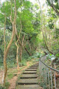田中森林公園步道 20170401