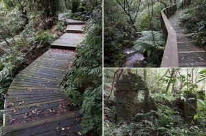 【基隆暖暖】遺跡與生態共存.荖寮坑礦業生態園區步道