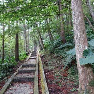 *步道小旅行*三峽滿月圓森林步道