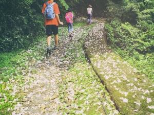 東勢格越嶺步道