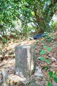 大津山(尾寮山前峰)
