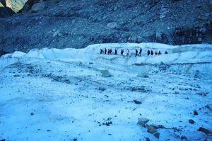 紐西蘭冰河歷險-法蘭克福冰河健行