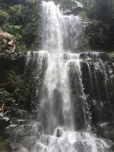 1060805三峽雲森瀑布