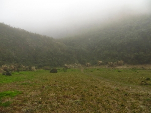 雲霧中遊走七星山之美