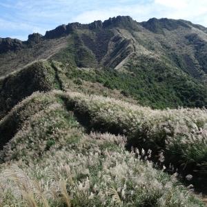 【步道小旅行】芒草佈滿茶壺山