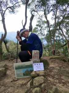 2018 04 20 桐林花廊步道