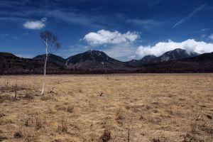 日光國立公園 -  戰場之原枯的美學