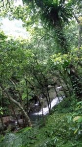 青山瀑布→尖山湖紀念碑步道O型連走
