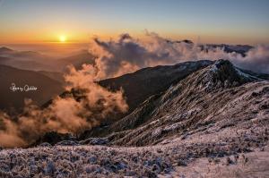 眷戀的冬台灣