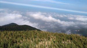 面天山層層雲海美極了!