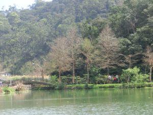 望龍埤.龍潭湖