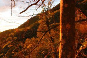 大雪山林道上的落日夕陽