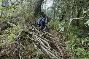 水漾森林。鹿屈山O型2018.04.04