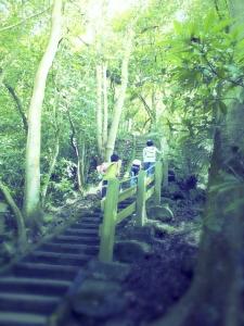 步道小旅行-台北象山