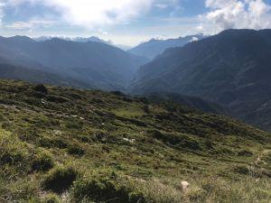 高山上的草原