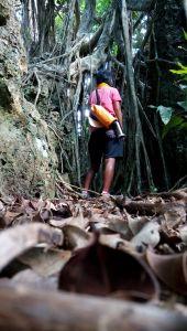 墾丁國家森林區步道