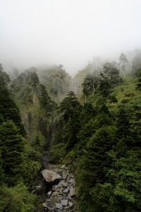 【山岳之美】2014中秋~奇萊南華
